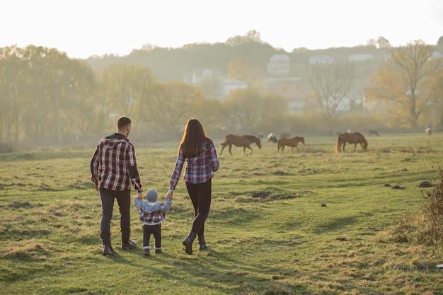 日没の夏の公園を歩いてかわいい家族