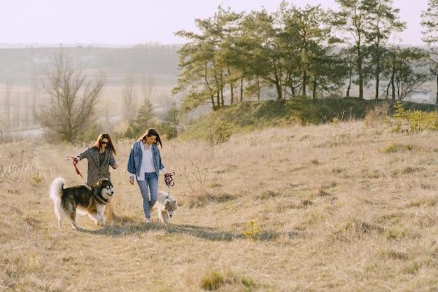 Две стильные девушки в солнечном поле с собаками