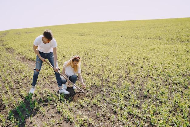 Пара сельское хозяйство в области сельского хозяйства