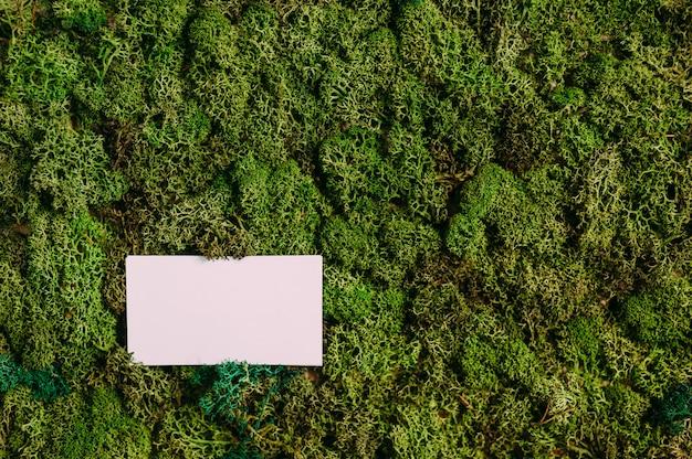 緑の苔の背景に名刺をモックアップします。自然をテーマにしたコンセプト。