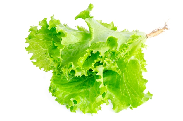 緑豊かなグリーンサラダ白で隔離。写真