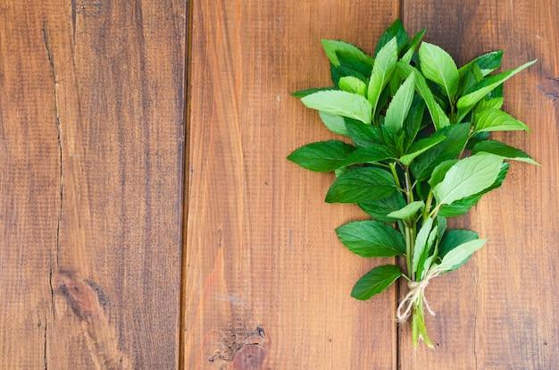 新鮮な緑の庭のミントの束。写真