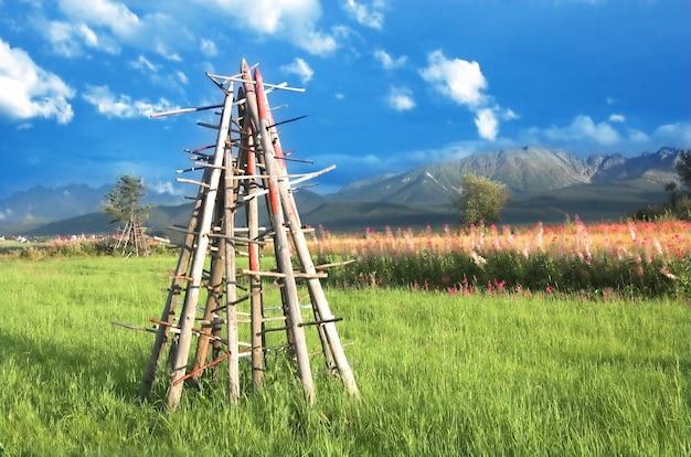 木材は緑の牧草地に置かれ