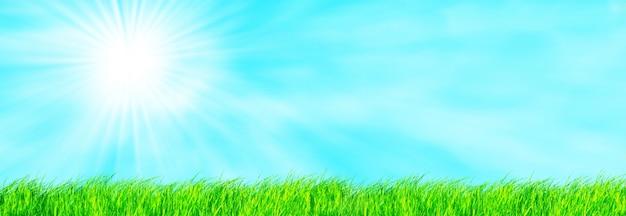Поле с солнцем