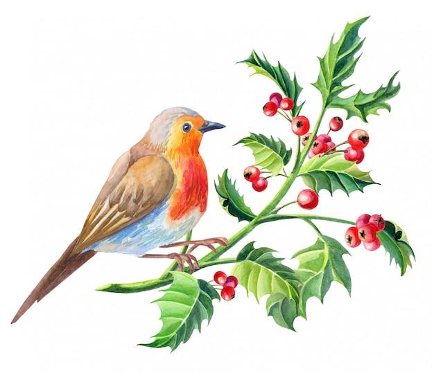 水彩のロビン鳥。水彩のメリークリスマスカード。新年のイラスト。
