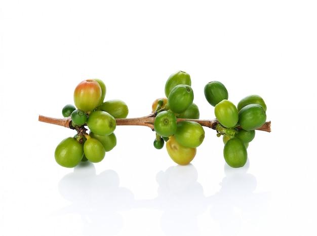 Зеленый кофе в зернах на белом