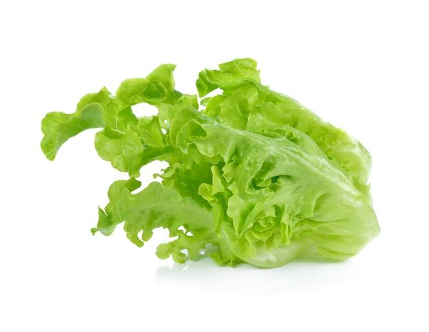 Салат салат изолированный