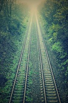 「森の中の鉄道の平行線」