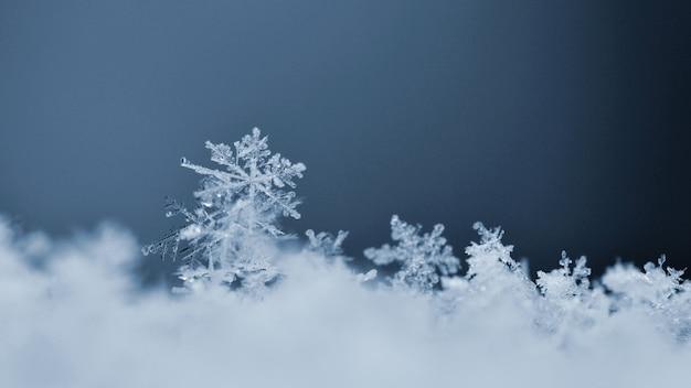 Снежинка. макро фотография реального кристалла снега. красивый зимний фон сезонной природы и
