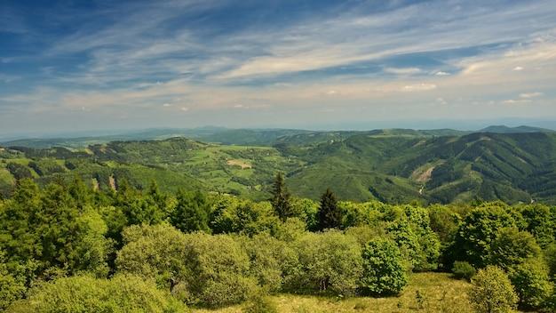 夏の山々の美しい風景