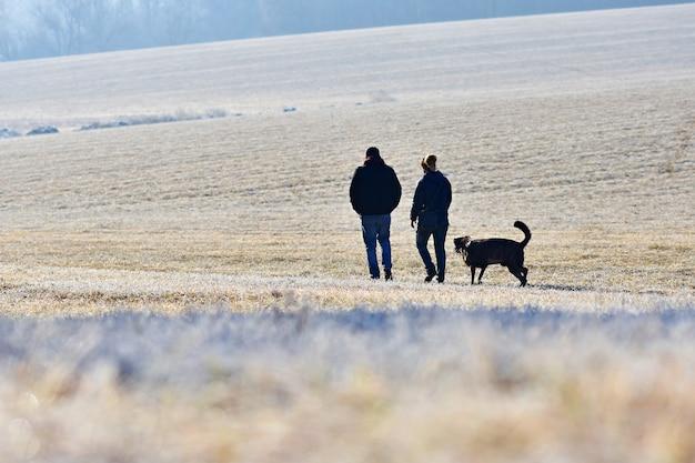 犬を連れて散歩をしている。自然の中で美しい冬の季節の背景。