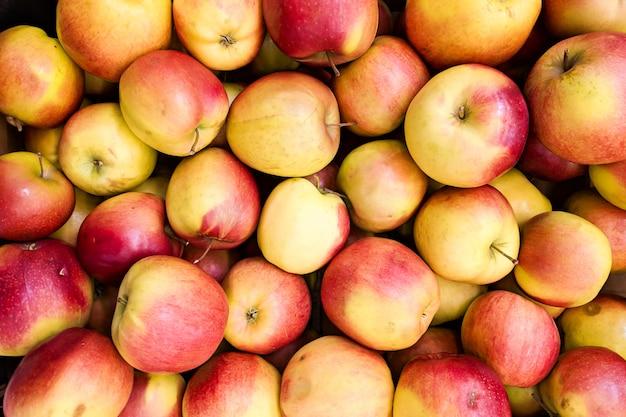 赤と黄色のリンゴの背景。ショップで栽培されている新鮮なリンゴの品種。