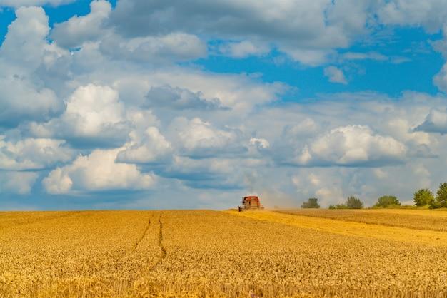 コンバインは、小麦の採集以上の分野で働いています。