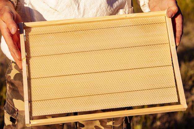 ミツバチの巣箱のフレーム