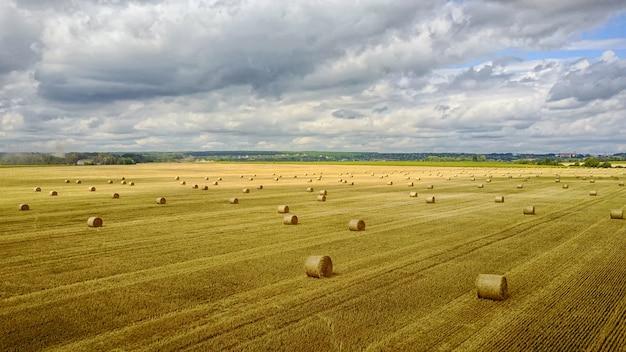 曇り空の麦畑