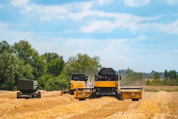 フィールドでの穀物収穫設備。農業部門
