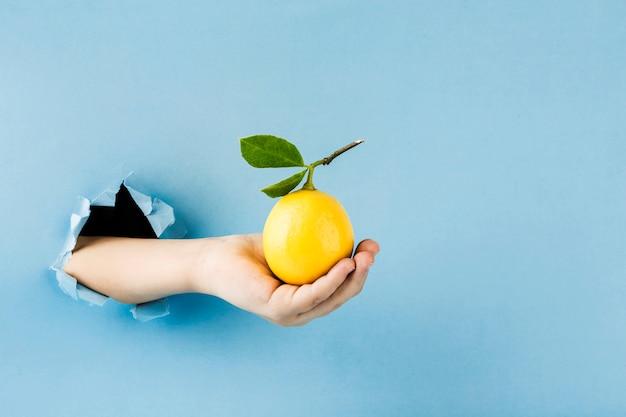 Спелый лимон с веткой и листьями в руке из отверстия в стене бумаги на синем фоне.