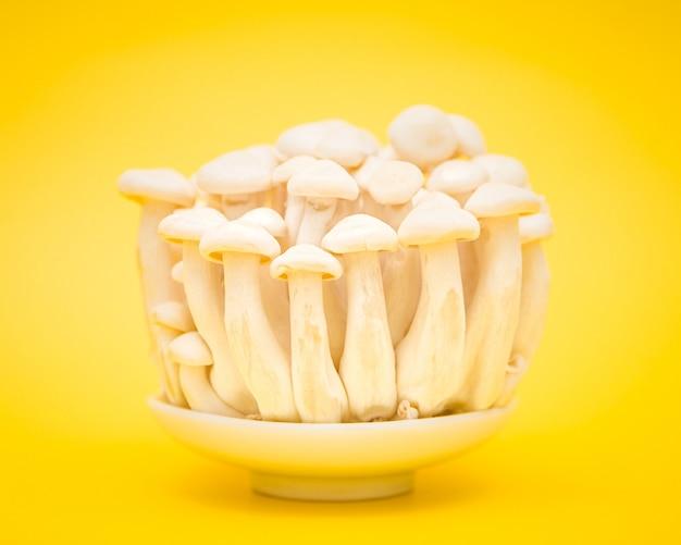 Грибы на белой тарелке над желтой