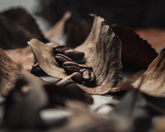 茶色の葉の上のコーヒー豆