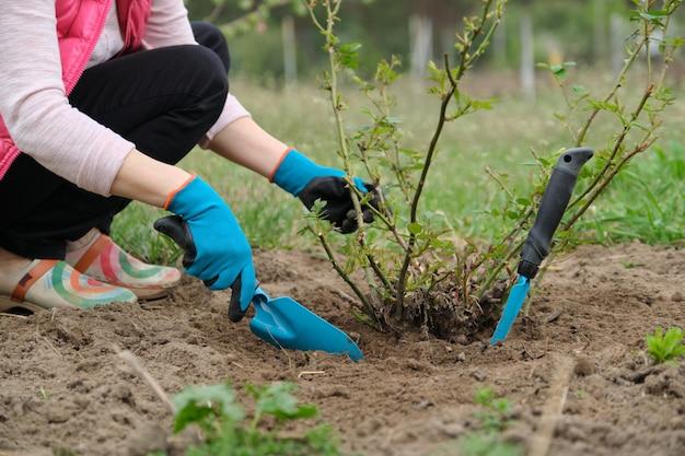 ガーデンツールと手袋を着用して女性の庭師