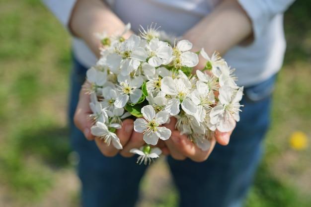 屋外のクローズアップの女の子の手に咲く白い桜