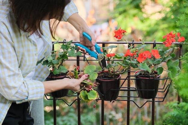 家の鉢植えの世話をする女性
