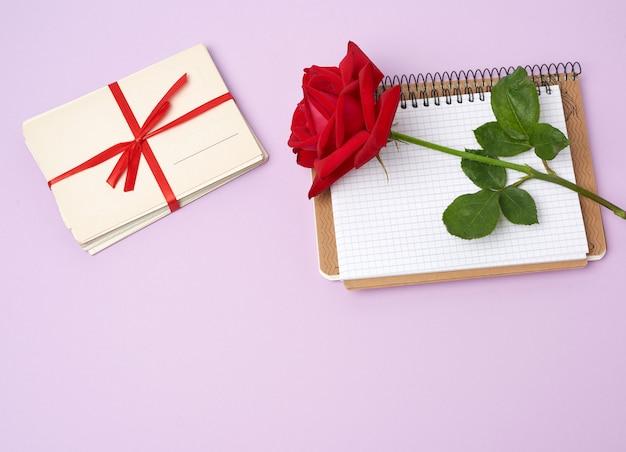 Красная цветущая роза, стопка старинных бумажных карточек и бумажный блокнот