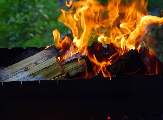 木の丸太を燃やす