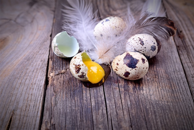 木の表面にウズラの卵