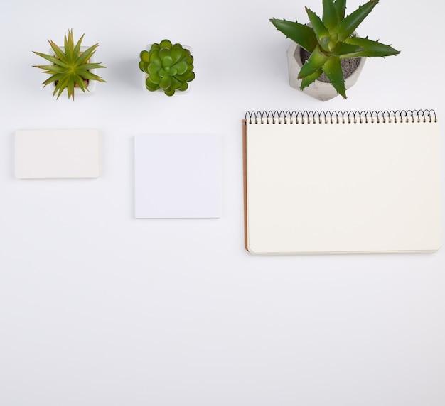 Открытая спиральная тетрадь с пустыми листами, горшки с зелеными комнатными растениями на белом столе