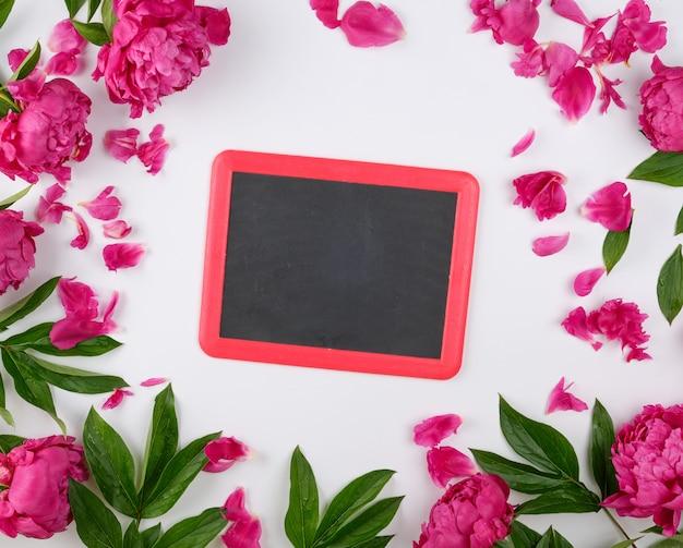 チョークで書くと白い背景に咲く赤い牡丹の空の黒いフレーム