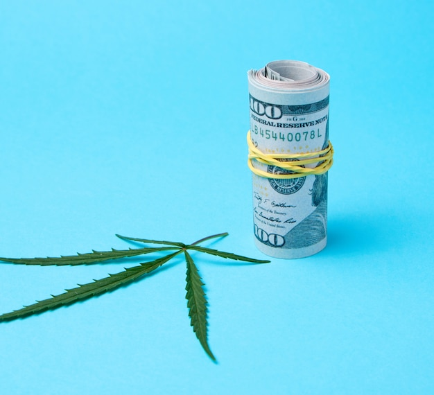 アメリカドルと麻の緑の葉の紙幣