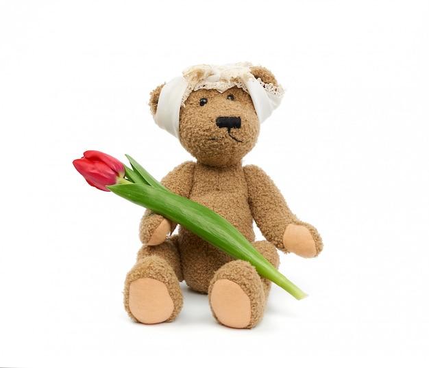 Винтажный милый коричневый мишка держит в лапке красный тюльпан