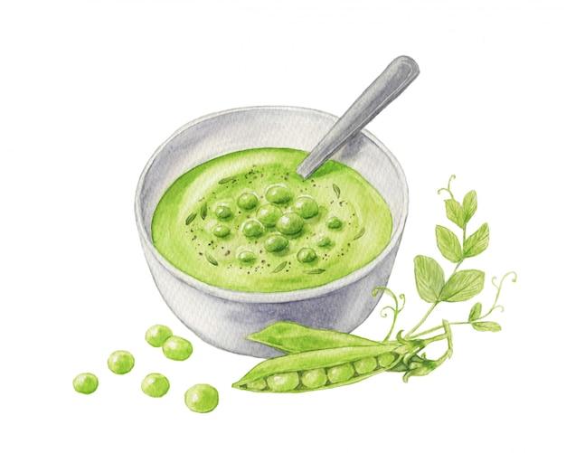 スプーンでボウルにグリーンピーススープの水彩イラスト。緑のエンドウ豆の鞘と分離したもやし