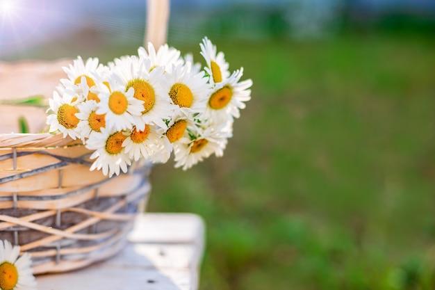 かごの中の白いヒナギクの花束