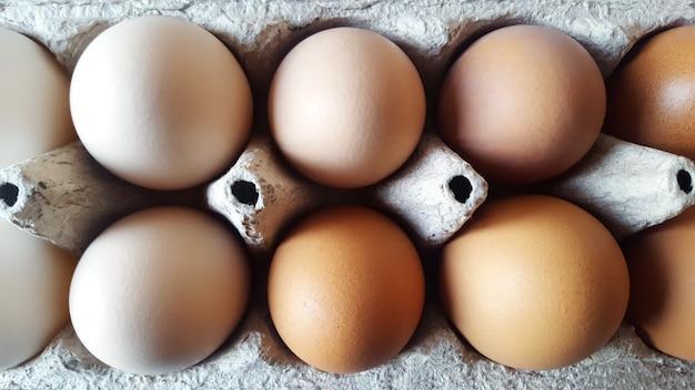 段ボール素材にさまざまな色合いの卵