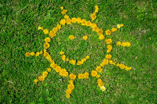 日は黄色の花で作られました