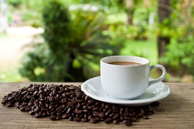 サービスシード詰め磁器のコーヒー種子
