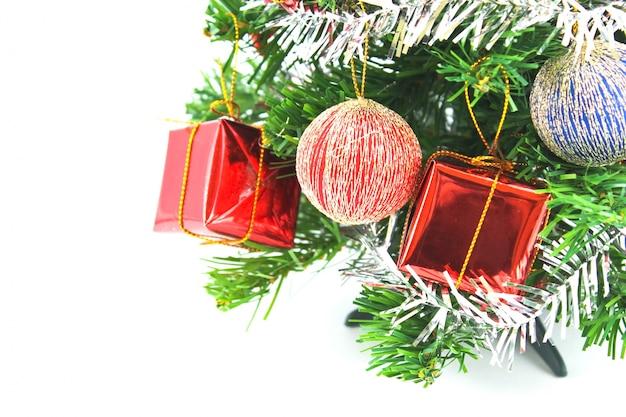 赤色冬フローラの枝のお祝い