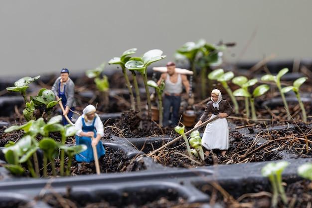 ミニチュアの人々の庭師は、朝の植栽の木に取り組んでいます。