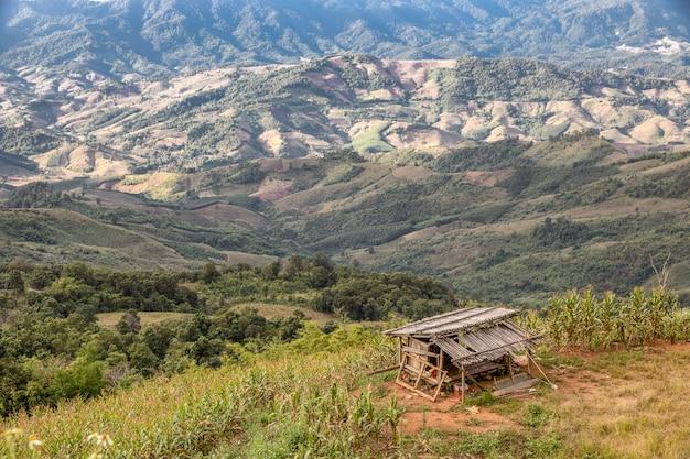 丘の山の上に古い竹の家