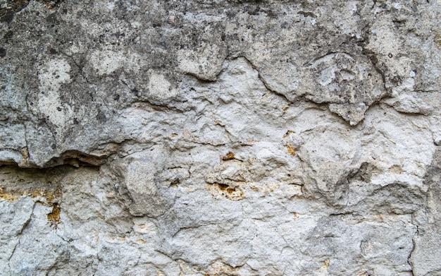 古いコンクリートの壁のテクスチャ。生石膏壁の背景。壁は天然石の貝殻でできています。