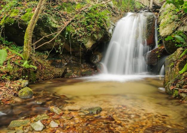 長時間露光で川と滝のある森林景観