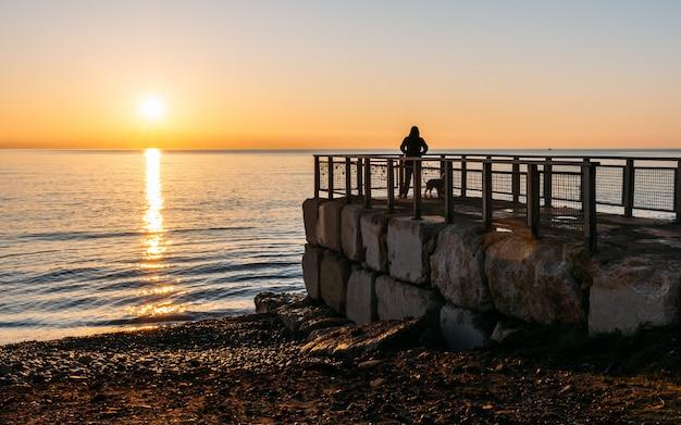 ビーチで日の出を見て彼女の犬を持つ少女