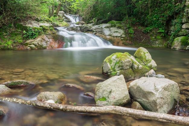 カタロニアの森の滝