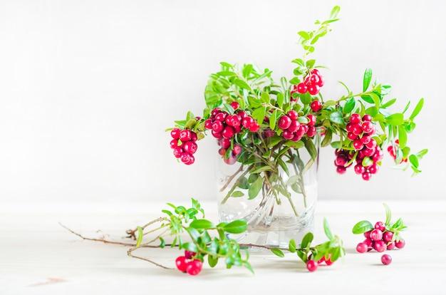 Букет спелой брусники в бокале. лесная ягода, брусника, лисичка, болото, лето, август. органический осенний урожай. лес.