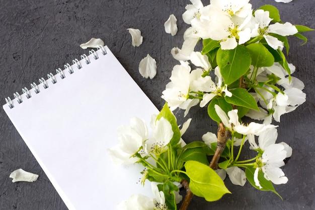 Цветочная композиция в весенний день. цветущие ветви яблони на сером фоне. блокнот с пространством для текста. концепция написания романтического письма на день святого валентина