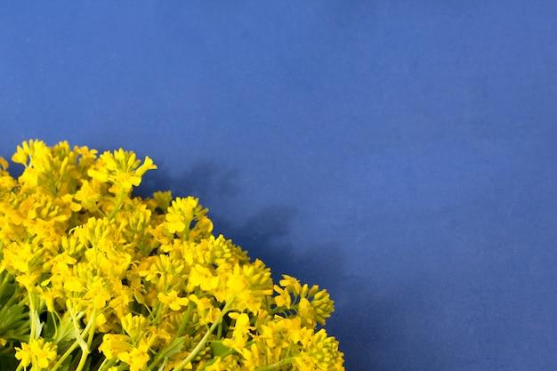 Букет полевых цветов на синем фоне, вид сверху с пространством для текста. свежие весенние цветы. подарок женскому, мамин, день святого валентина, день рождения и другие события