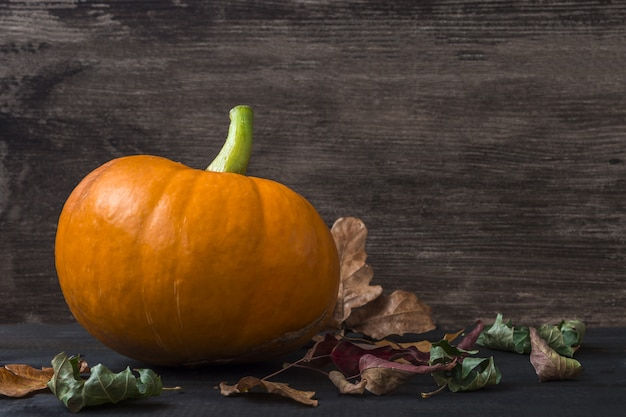 暗い背景に乾燥した葉と秋の感謝祭とハロウィーンカボチャ