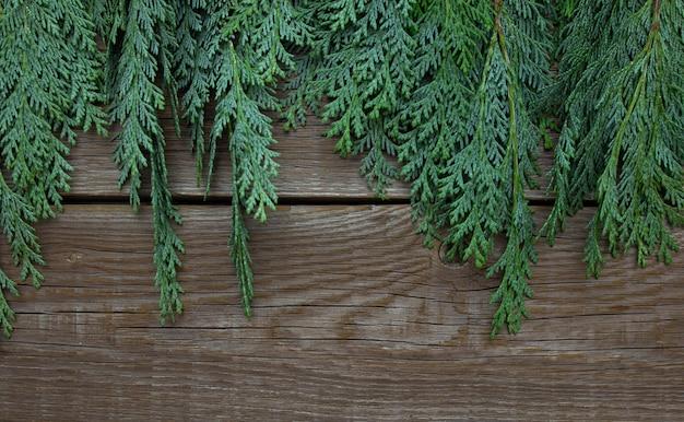 Рождественский фон ветви туи на состаренных деревянных досках.